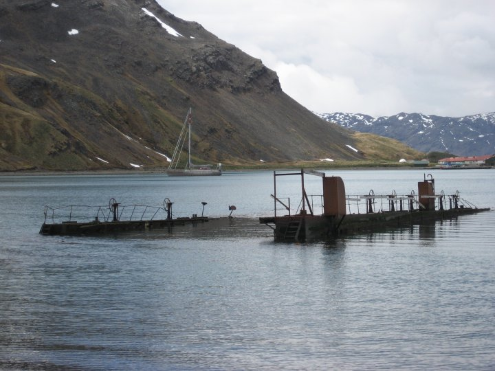 The Floating Dock.
