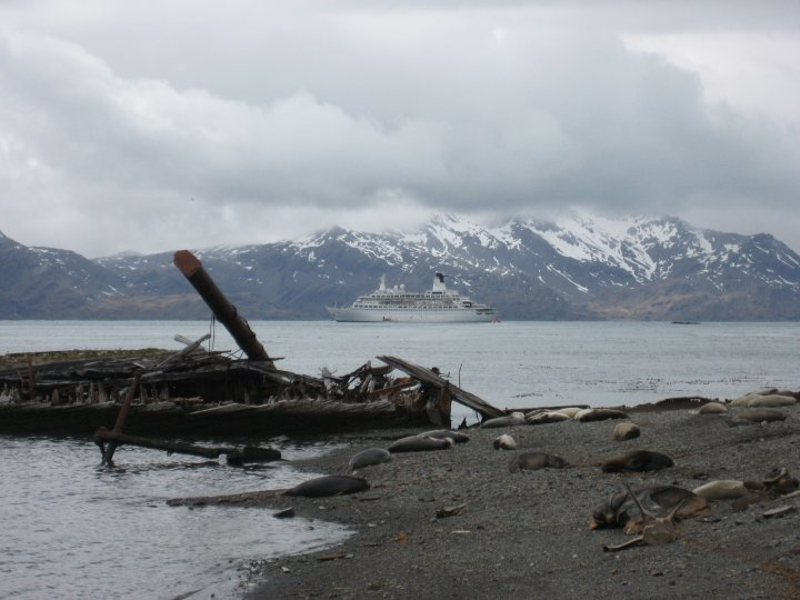 Looking out from the abandoned whaling station.