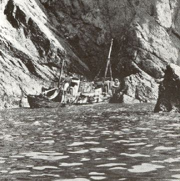 The French trawler Tarascon in Steple cove in 1938.She was refloated on the next spring tide after all the crew had been dragged to safety through the heavy surf.