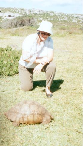 The Leopard Tortoise.
