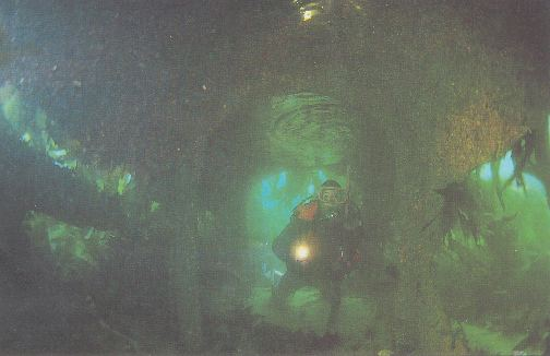Inside one of the metal tunnels.
